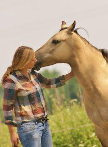 pferdeverstehen